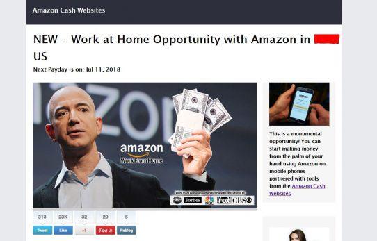 Amazon Cash Websites and Prime Time Profits