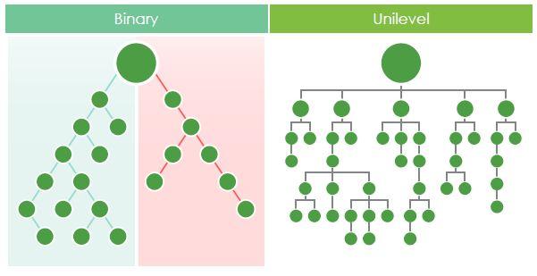 Yoli Binary Unilevel