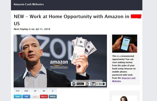 Amazon Cash Websites