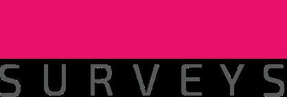 Branded Surveys Reviews